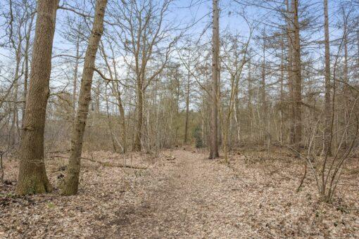 Vissersweg 44A, Elst ut